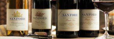 Shop & Explore Our Wines